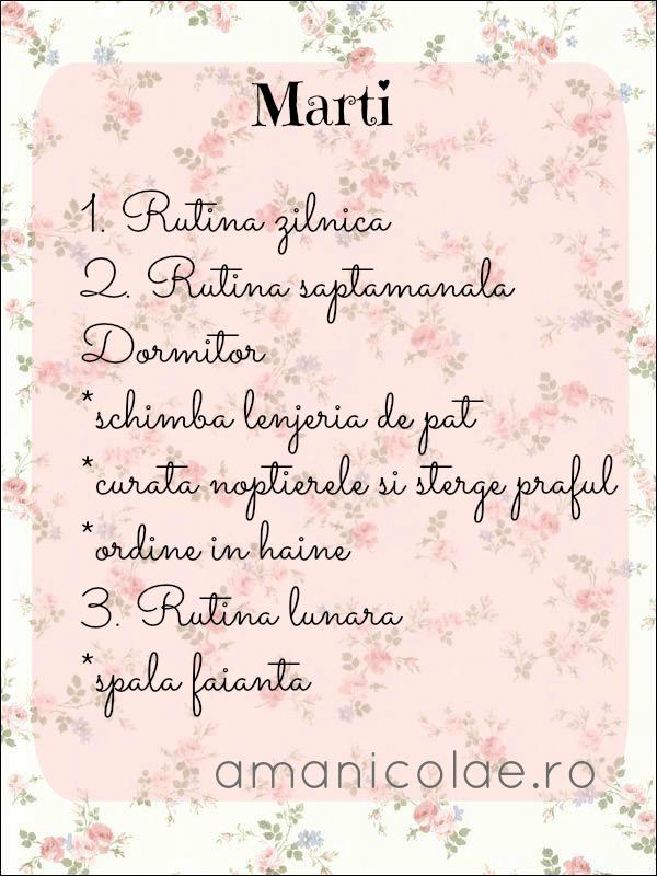 Plan de curatenie saptamanala (9 mai)