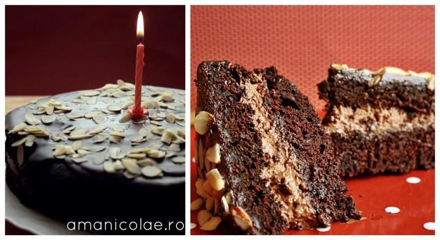 tort de sfecla si ciocolata