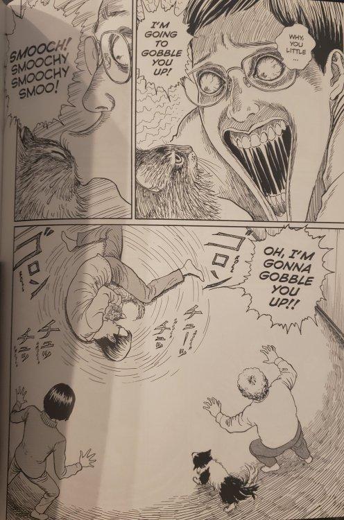 full page from junji ito's cat diary