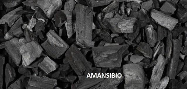 charbon de bois prêt à l'emploi