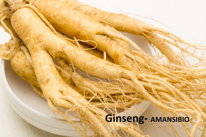 Fraîche Ginseng