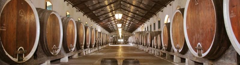 caves do vinho