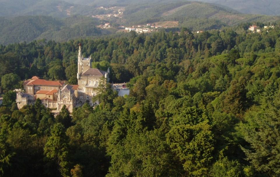 Mata do Bussaco - Portugal