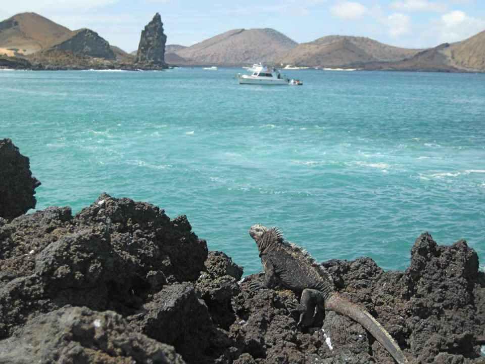 Ilhas Galápagos