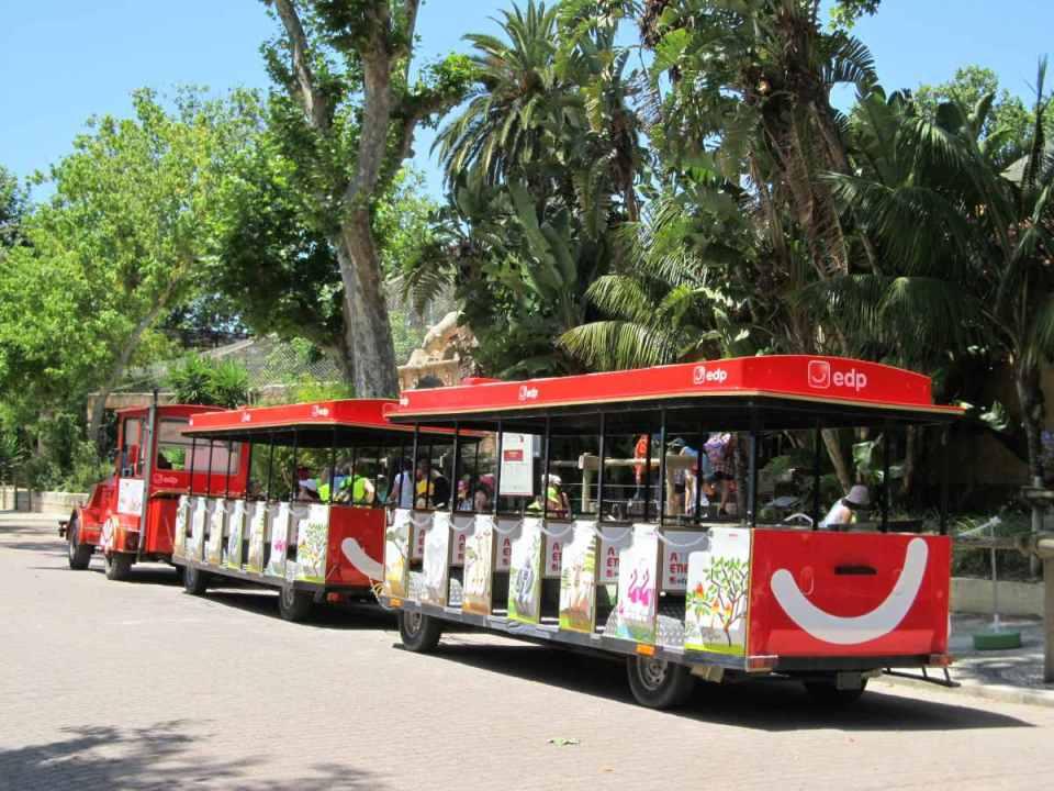 Comboio Zoo Lisboa