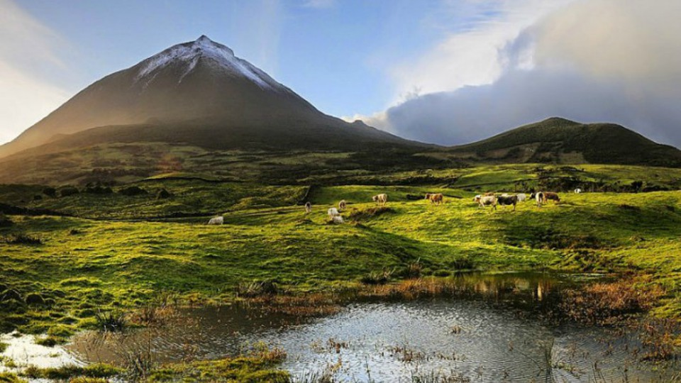 Ilha do Pico- Açores