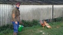 Jean Marc Pinochet , éleveur de poulets, veaux et boeufs.
