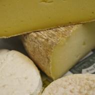 fromages de vache réalisés par Lauriane Lereau