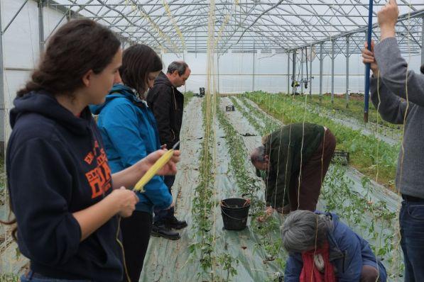 20170506 journee plants jardin 08
