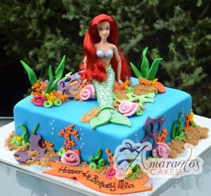 Ariel Cake NC338