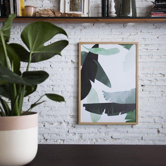 elementos naturales en decoración. Láminas de plantas