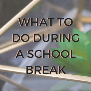 3 Things To Do During A School Break 1