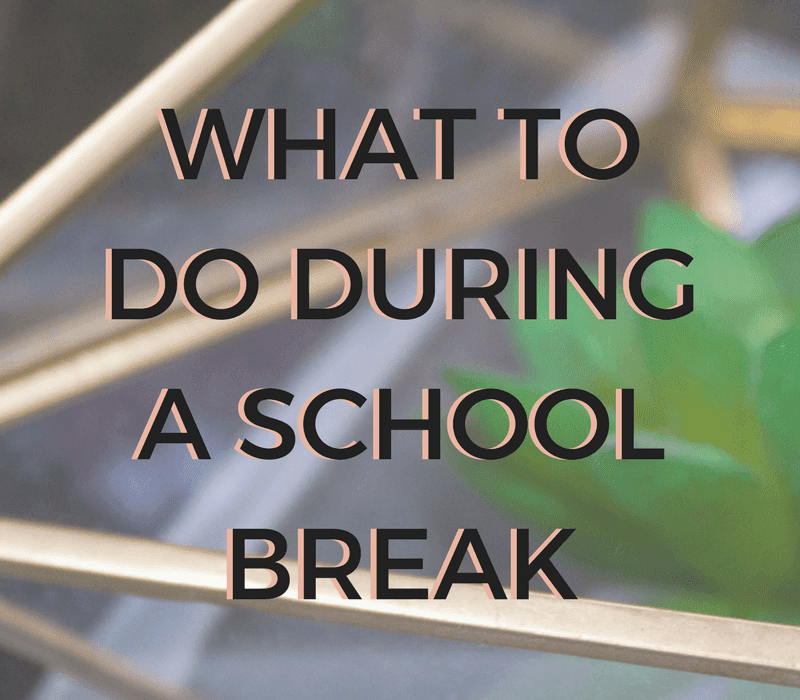3 Things To Do During A School Break