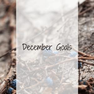 December Goals 4