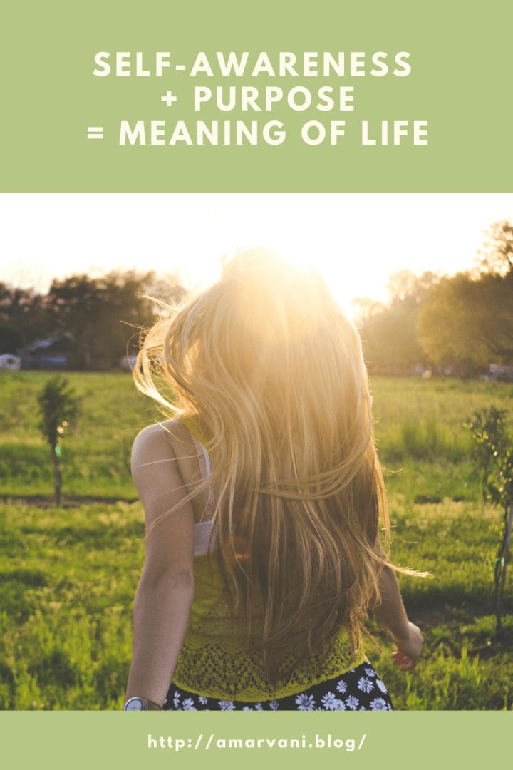 What is the meaning of life and how to find it?