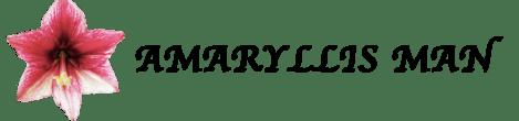 Amaryllis Man