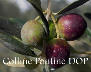 Colline Pontine DOP