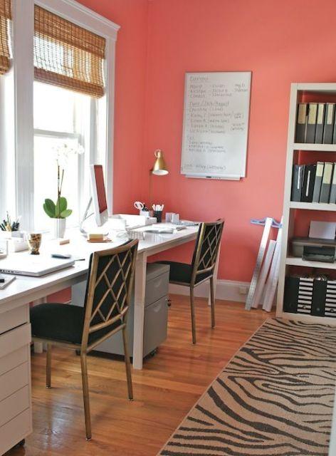 Pareti Living Coral per lo studio