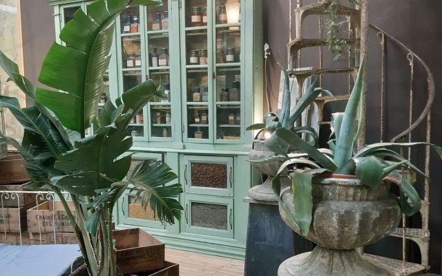 Antico e design del giardino a Petra Modena