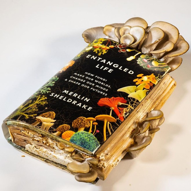 A copy of Merlin Sheldrake's book Entangled Life, with oyster mushrooms sprouting out of it.