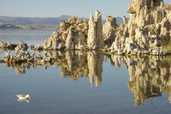 Mono Lake South Tufa