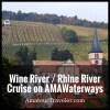 Wine River / Rhine River Cruise on AMAWaterways