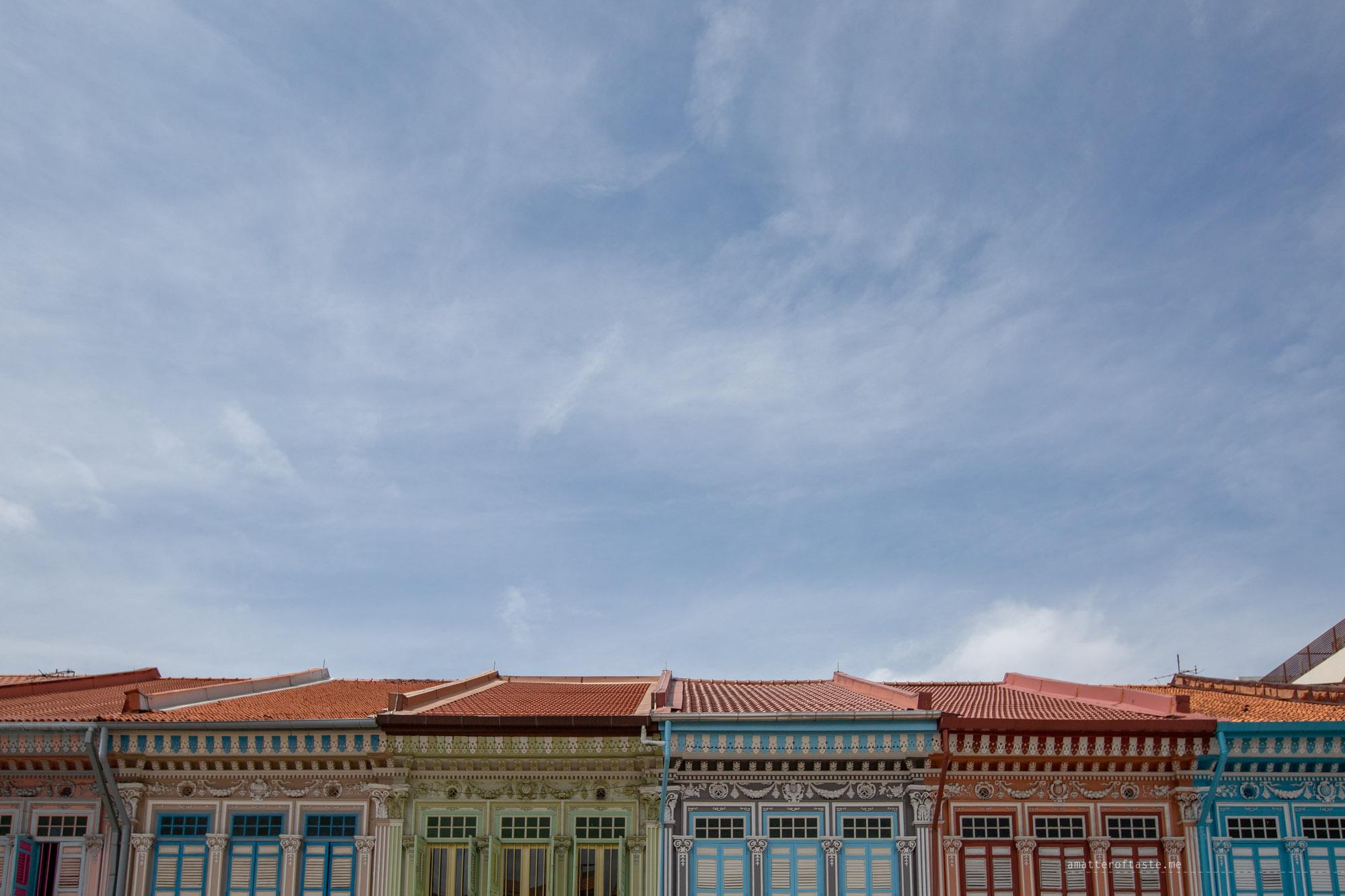 13-katong-joochiat-houses-roofs