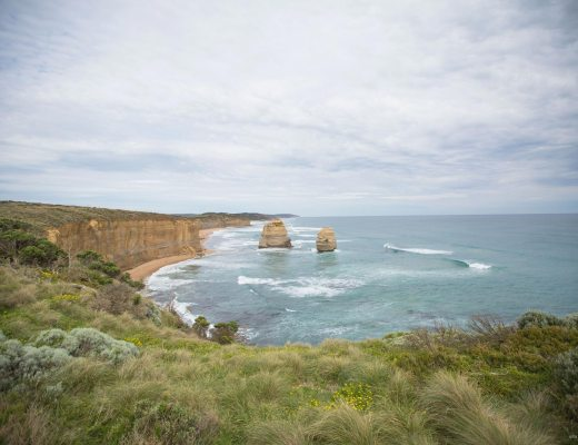One of the 12 Apostles lookouts with greenery in front and vast open ocean in the background.