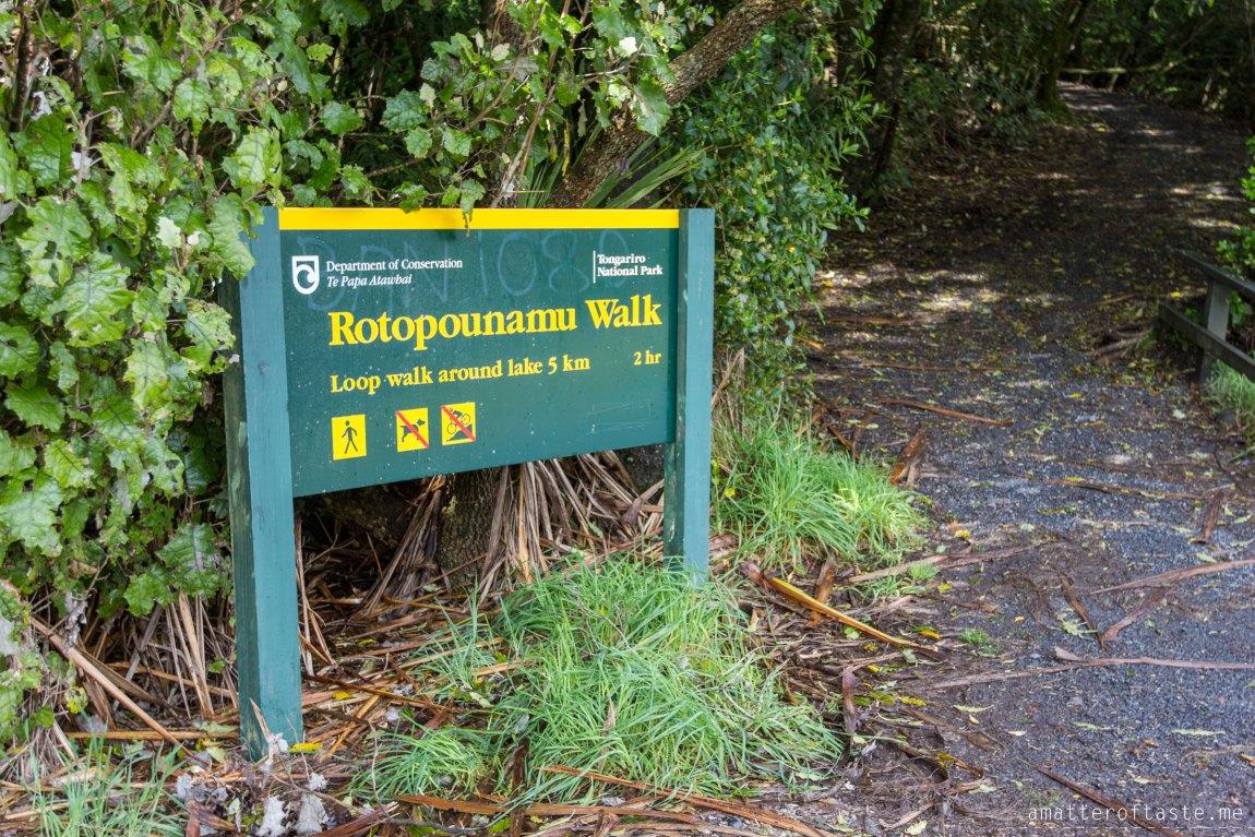 Tongariro - Lake Rotopounamu Walk