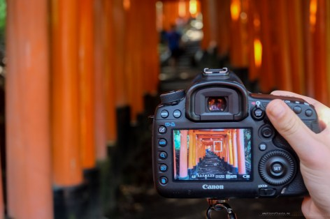 Fushimi Inari Shrine Kyoto red torii gates