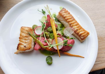 two pieces of grilled cod with colourful vegetables in the middle. The whole dish looks delicate, fresh and healthy.