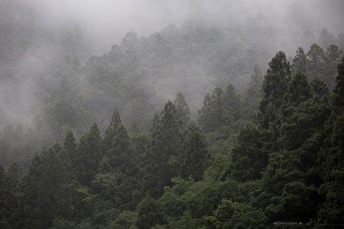 fujiya-ryokan-wakayama-mountains-cloud