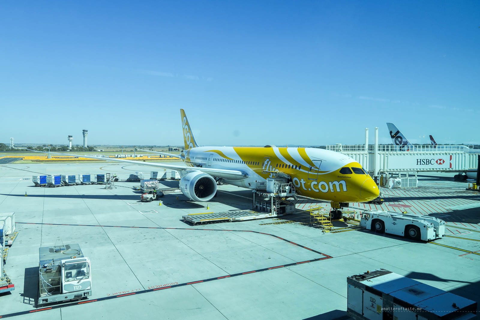 scoot-dreamliner-melbourne-airport