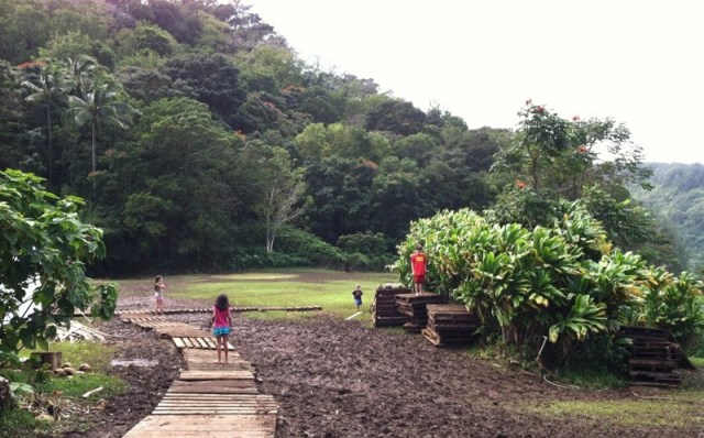 Maui Keanae