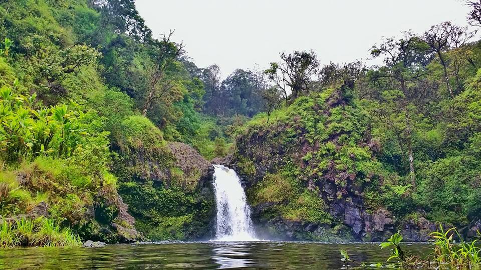 Adventure With Waterfalls – Hana, Maui