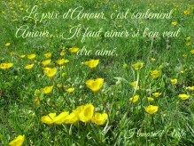 quote versailles yellow flowers