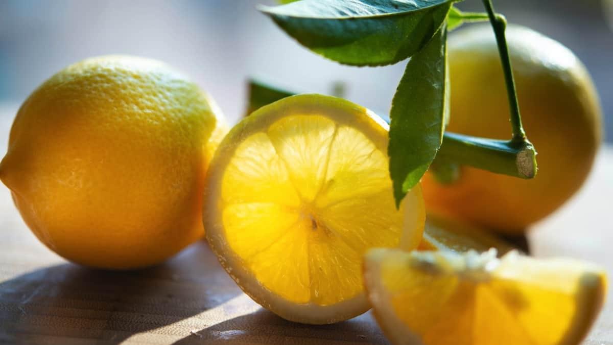 Pucker Up! 10 Easy Ways to Enjoy Lemons This Summer