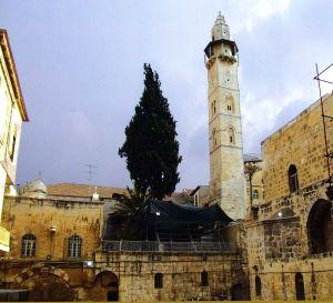 Omar_In_jerusalem