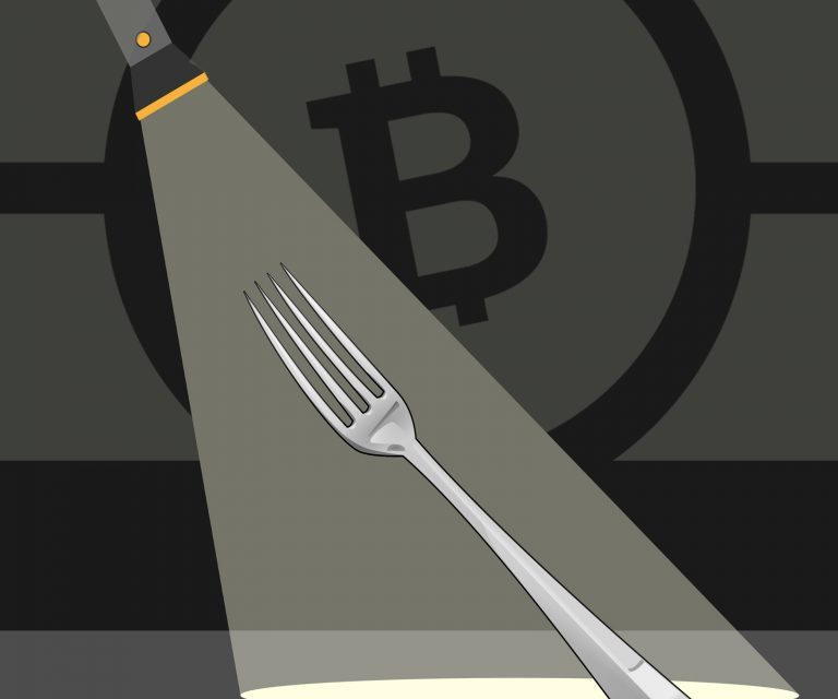 Fork Watch: List of BCH Services Providing Fork Support