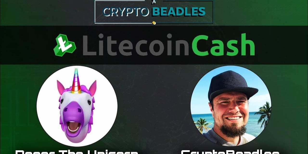 (Crypto) Litecoin Cash Hive, 51% attacks, updates and more!