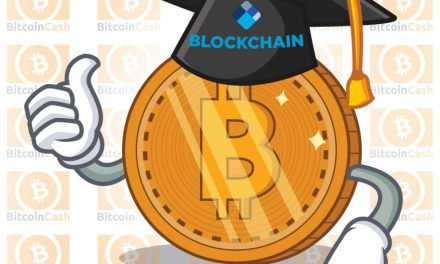 Blockchain.com Launches New Educational Resource With Bitcoin Cash Report