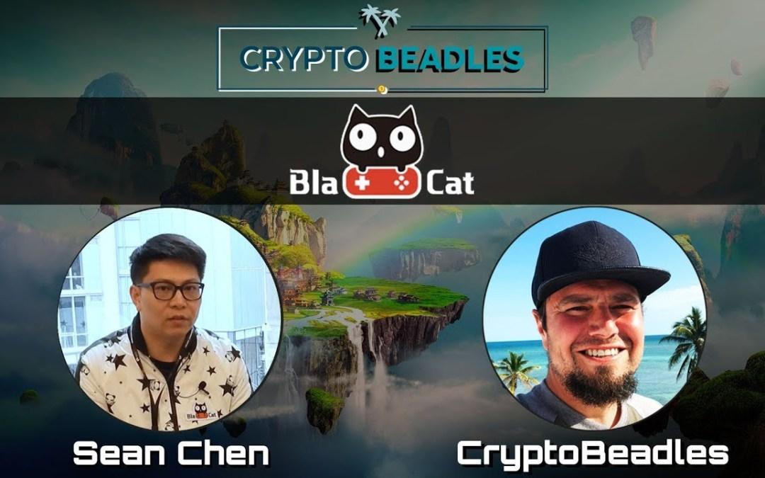 ⎮BlaCat⎮Crypto gaming ecosystem built on the NEO Blockchain
