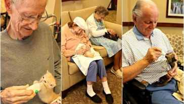 Elderly helping animal shelters in Arizona