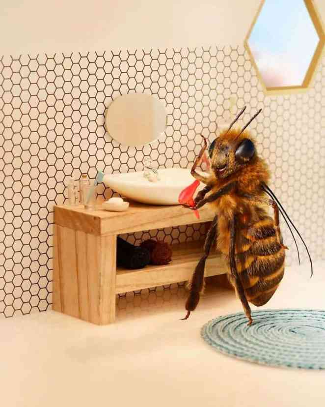 protect bees to maintain ecosystem