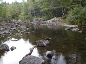 View of Trout Brook in late summer, Baxter State Park, Maine