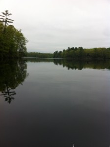 General view of Ell Pond