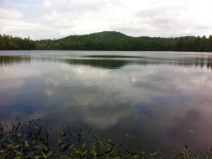 General view of Little Moose Pond