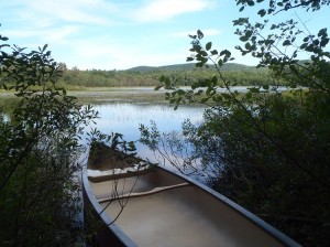 Access point to Proctor Pond