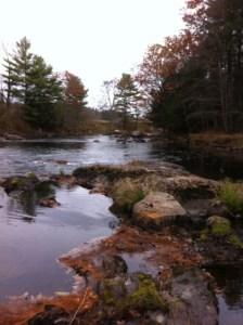 More complex trout habitat on the Nezinscott River