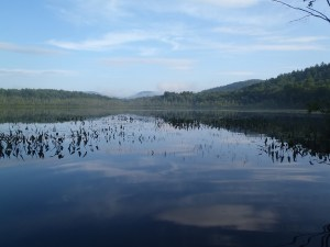 What can beat a lazy summer morning chasing largemouths in this beautiful setting?
